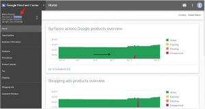 Google-Shopping-API-1